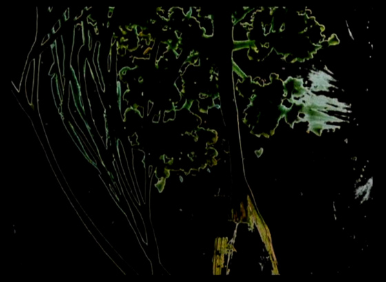 Stan Brakhage The Garden of Earthly Delights(1981)