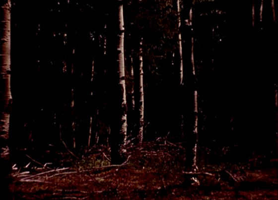 Stan Brakhage The Wold Shadow(1972)