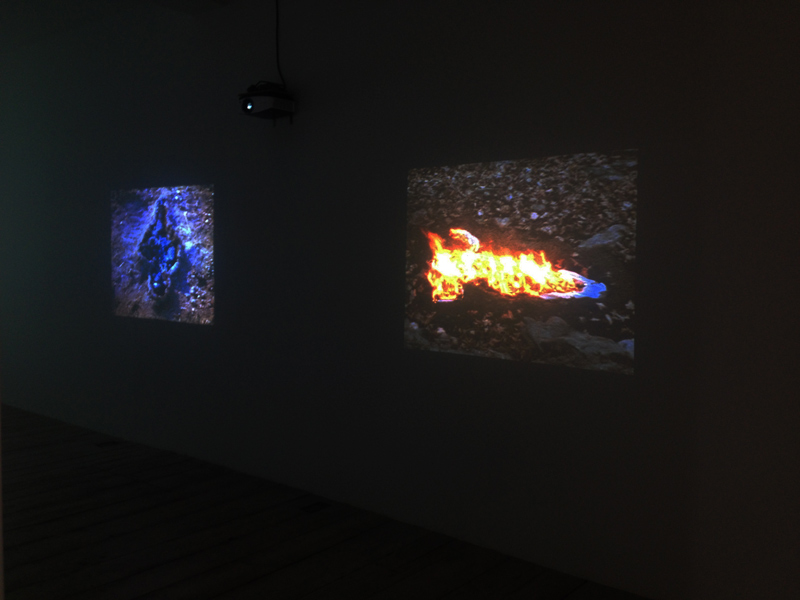 Luescher Mendieta Murak Exhibition View 5